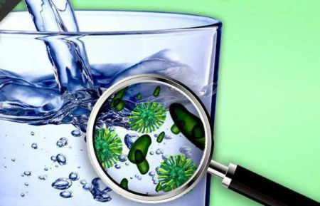 Очистка воды в природных условиях   Мастер
